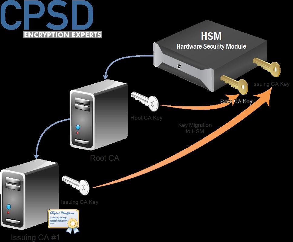 Microsoft Certificate Authority HSM Key Migration Process
